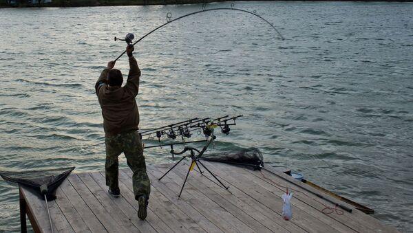 釣り - Sputnik 日本