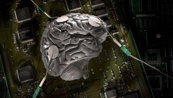 脳 - Sputnik 日本