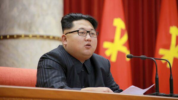 北朝鮮 金正男氏殺害は「米韓による暴挙」 - Sputnik 日本