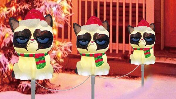 ビールとおしゃれな服を愛する猫ブロガー、アルベルトがインスタグラムのユーザーたちの愛を獲得 - Sputnik 日本