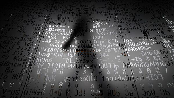 ブルームバーグ:世界のさまざまな200超の団体を標的に大規模サイバー攻撃 - Sputnik 日本