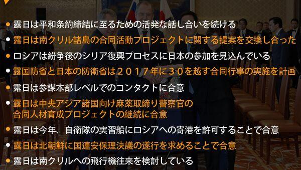 露日協議 [2プラス2] 初日の会談結果 - Sputnik 日本