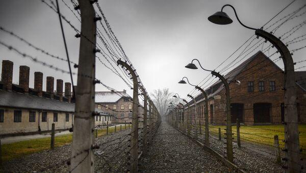 審理から逃亡 ナチス加担の96歳ドイツ人老女を警察が逮捕 - Sputnik 日本