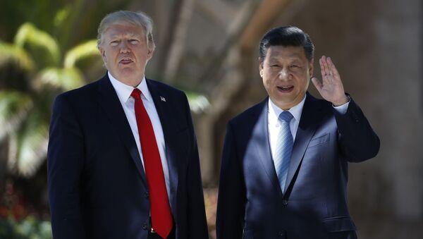 Президент США Дональд Трамп и председатель КНР Си Цзиньпин - Sputnik 日本