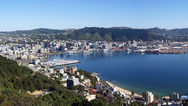 ウェリントン(ニュージーランド) - Sputnik 日本