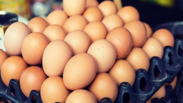 ドイツで1100万個の殺虫剤フィプロニル入り卵が発見 - Sputnik 日本