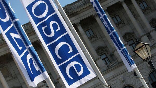 OSCEは死んだ。新OSCE、万歳! - Sputnik 日本
