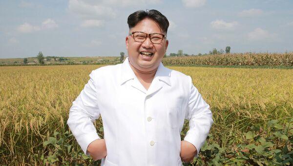 Лидер КНДР Ким Чен Ын инспектирует сельскохозяйственные угодья - Sputnik 日本
