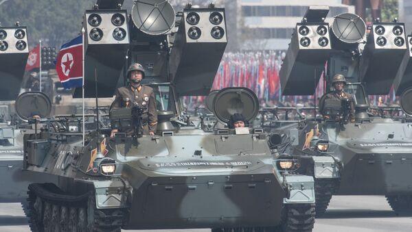 露米外相、北朝鮮を「核保有国と認めない」 - Sputnik 日本