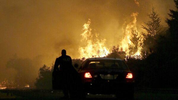 米カリフォルニア州の山火事で非常事態令 【動画】 - Sputnik 日本