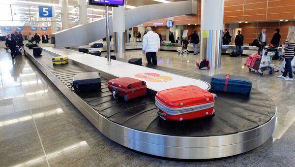 スーツケース(アーカイブ写真) - Sputnik 日本