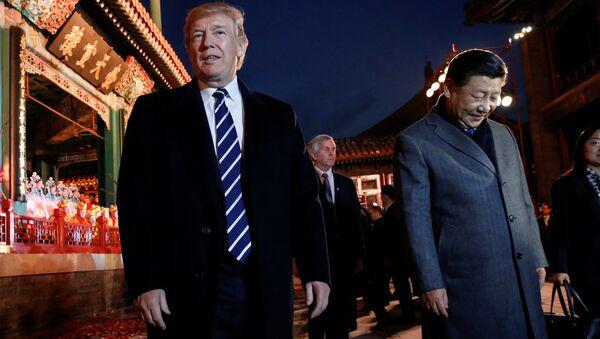 トランプ氏、マクロ的見地を放棄?日本人専門家がアジア歴訪を分析 - Sputnik 日本