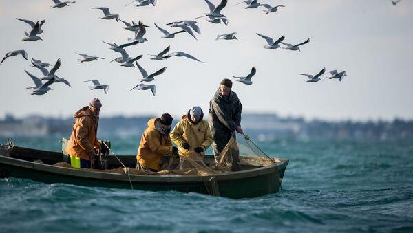 黒海セヴァストポリの岸辺で海釣りに興じる釣り人たち - Sputnik 日本