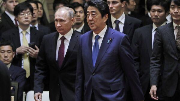 これまで結果ゼロのプーチン・安倍会談、なぜ28回目が必要なのか? - Sputnik 日本
