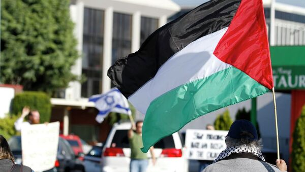 パレスチナの旗(アーカイブ) - Sputnik 日本