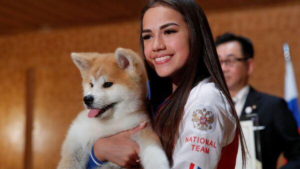 ザギトワがもらったような犬がほしい!秋田犬の故郷からのルポ - Sputnik 日本