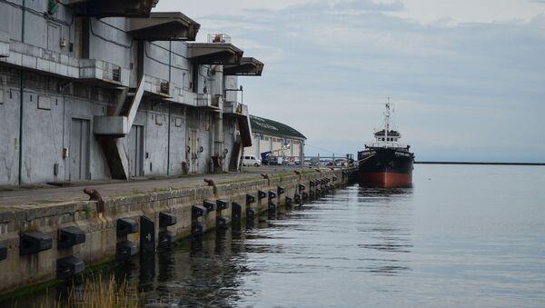 サハリンの国境警備隊 日本の海上保安庁と合同実習へ - Sputnik 日本