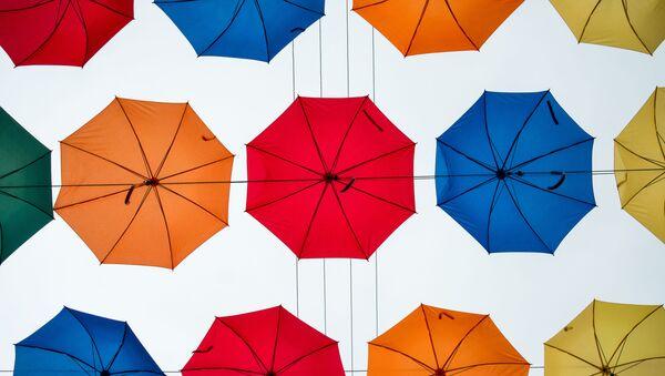 傘 - Sputnik 日本