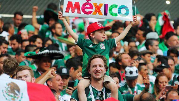 サッカーW杯2018 メキシコ代表が韓国代表に勝利 - Sputnik 日本
