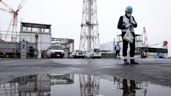 福島 - Sputnik 日本