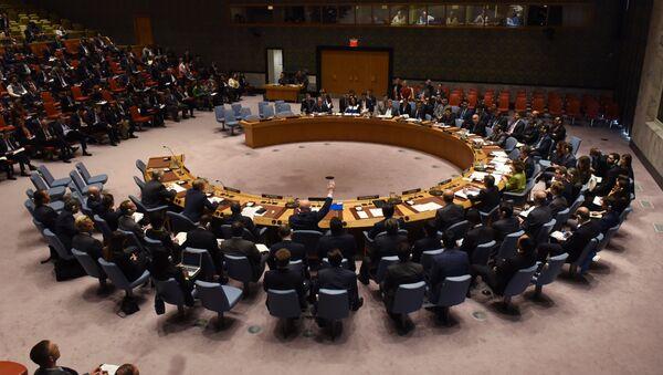 アフガン、国連安保理の招集を要請 アフガン情勢を協議 - Sputnik 日本