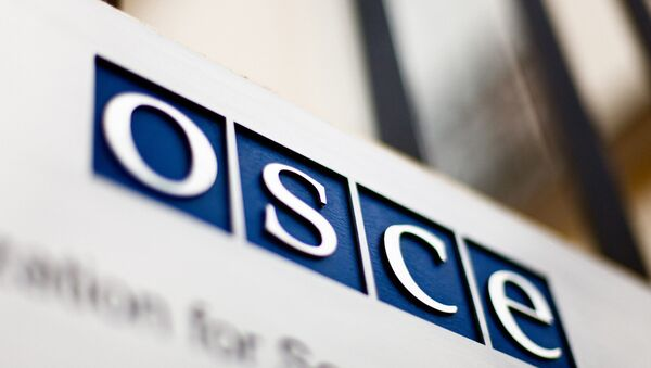 欧州安全保障協力機構(OSCE) - Sputnik 日本