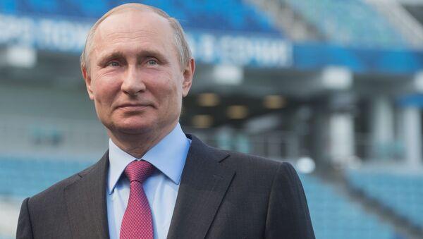 Президент РФ Владимир Путин во время осмотра стадиона Фишт после реконструкции - Sputnik 日本
