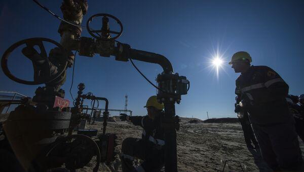 北極圏の氷の融解がロシアの石油採掘を脅かす? - Sputnik 日本