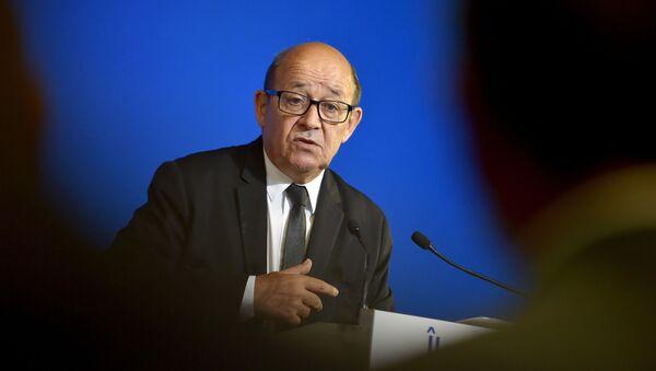 フランスのジャン=イヴ・ル・ドリアン外相 - Sputnik 日本