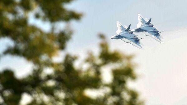 露国境 1週間で航空機36機の偵察飛行が確認 - Sputnik 日本