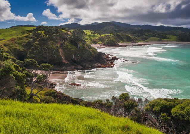 ニュージーランド(アーカイブ写真)
