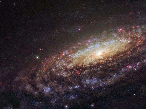 ペガスス座の方角にある渦巻銀河「NGC 7331」 - Sputnik 日本