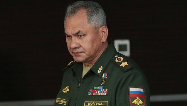 ロシアのショイグ国防相(アーカイブ写真) - Sputnik 日本