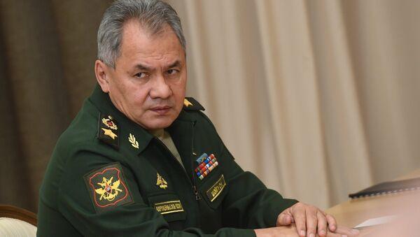 ロシアのショイグ国防相 - Sputnik 日本
