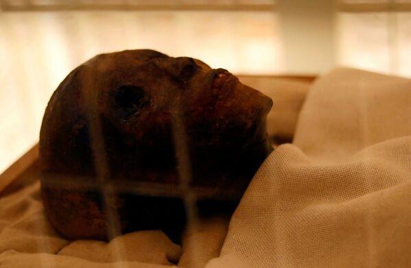 ツタンカーメンのお母さんのミイラの頭 - Sputnik 日本