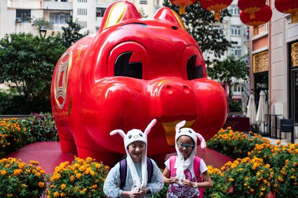 ブタのインスタレーションと子どもたち 香港 - Sputnik 日本