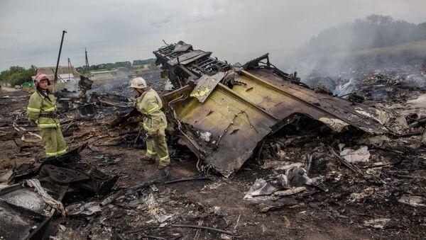 オランダの裁判所 マレーシア航空17便撃墜に関する別案の検討を予定せず - Sputnik 日本