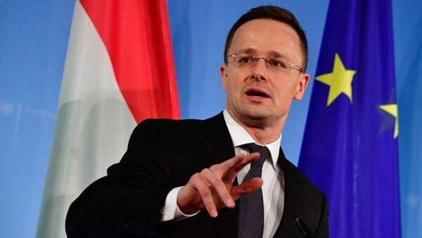 ハンガリー外相:ロシアをめぐる西側の批判は偽善 - Sputnik 日本