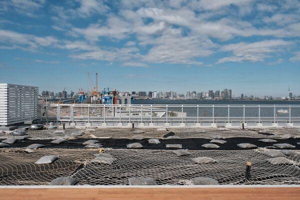 海の森水上競技場は、江東区青海3丁目に所在している - Sputnik 日本