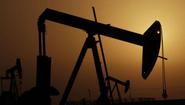 WTI原油 1バレル30ドル割れ - Sputnik 日本