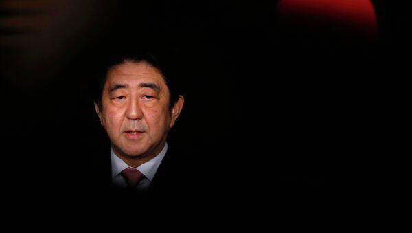 野党に安倍氏辞職は無理、だが安倍氏にはラディカルな改革が必要 - Sputnik 日本