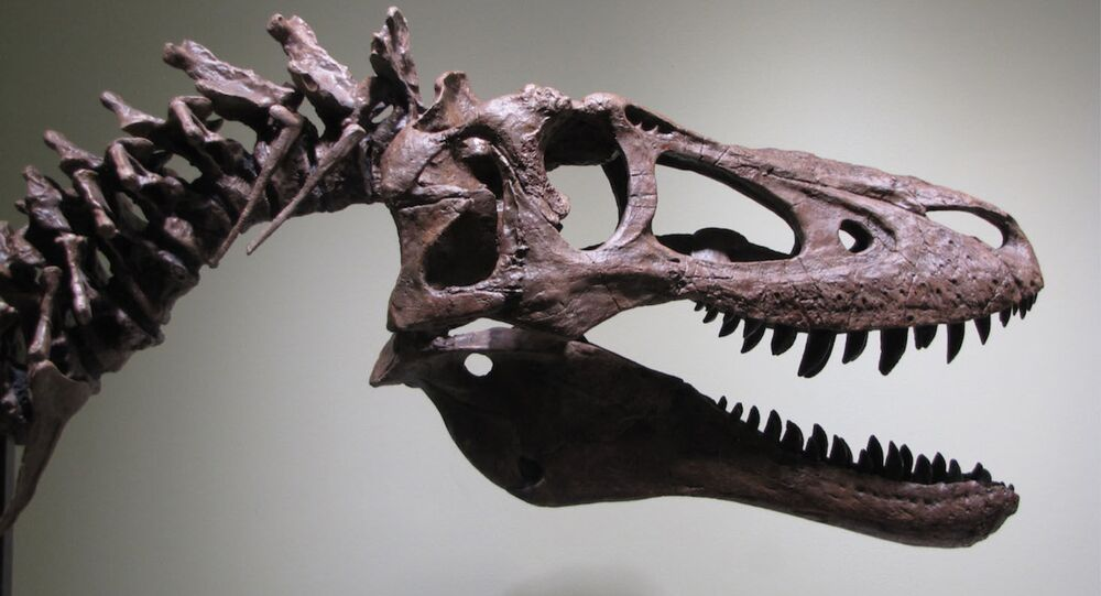 恐竜の赤ちゃん