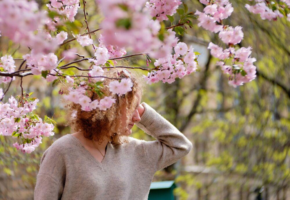 女性と桜、「友好の庭園」にて