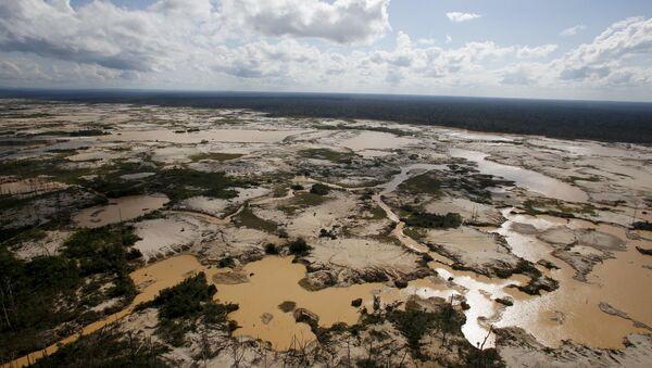 アマゾンでの森林破壊 - Sputnik 日本
