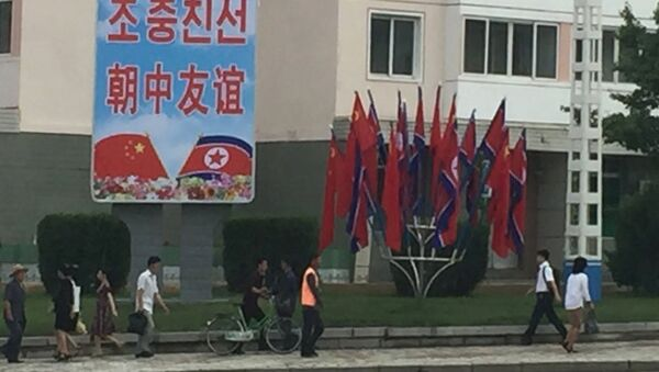 習国家主席、北朝鮮に到着 中国主席の訪朝は14年ぶり - Sputnik 日本