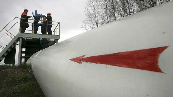 露パイプライン、新たな原油汚染発見 再び有機塩素化合物 - Sputnik 日本