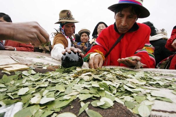 自分の内なる世界を感じ、疲労を取り除き、「山の病気」を予防するためにコカの葉を噛むボリビア先住民族の儀式  - Sputnik 日本