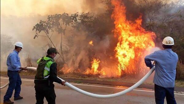 ボリビアで森林火災 - Sputnik 日本