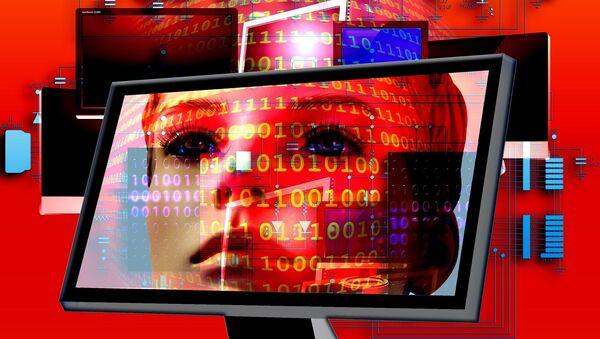 サイバー犯罪決議 - Sputnik 日本