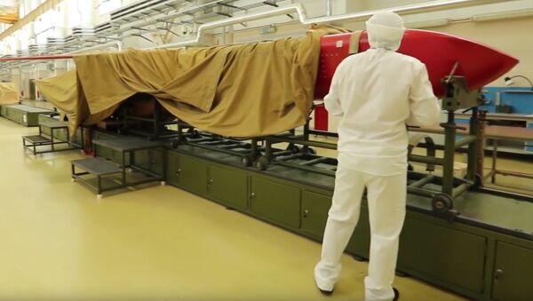 「ブレヴェスニク」ミサイルの実験 - Sputnik 日本